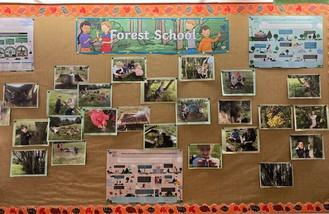 forest school.jpg
