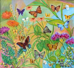 Butterflies Morning