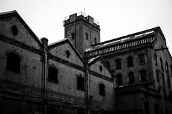 MoinhoMatarazzo_dudabairros-0101