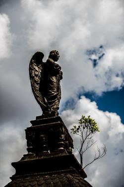20180222_dudabairros_CemiterioDaConsolacao-0109