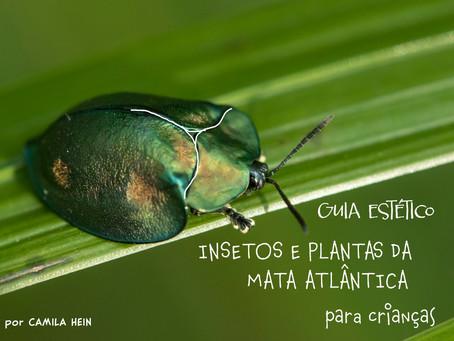 Pequeno Guia Estético de Insetos e Plantas da Mata Atlântica para crianças