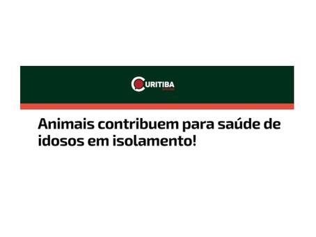 Curitiba Notícias