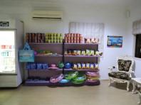 Convenience Store.jpg