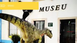 Nova exposição no Museu da Lourinhã