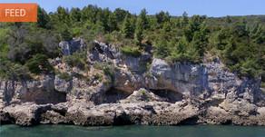 Investigadores portugueses defendem que Neandertais foram primeiros a explorar recursos marinhos