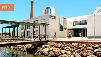 8 metros de golfinho de plástico no Museu de Portimão
