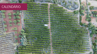 Workshop de agricultura, inovação e preservação de paisagens culturais