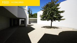 Serralves procura Curador Sénior/Director Adjunto para o Museu de Arte Contemporânea