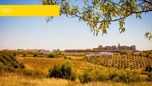 The Best In Europe: Alentejo 2017