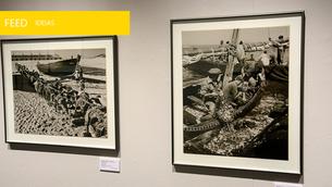 Fotografia de Artur Pastor em exposição