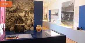 Museu Marítimo de Sesimbra nomeado para o EMYA 2020