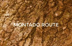 MONTADO ROUTE