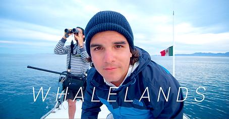 WhalelandsPresenter.png