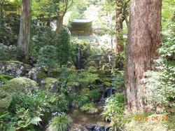 最乗寺は自然の中にあります