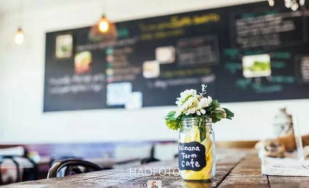 Kaimana Farm Cafe/Interia Design/Dining