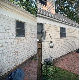 Before and after SNN Painting