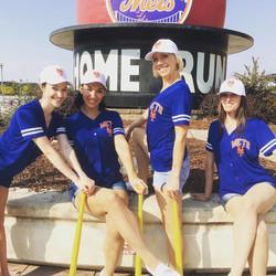 Mets Girl, Meet The Mets