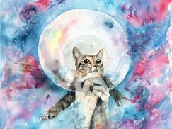 畫夢境系列 這是🐝的夢_不如你們也留言告訴我有趣的夢,我再畫出來?🤓先謝謝你
