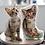 Thumbnail: 寵物畫產品訂製