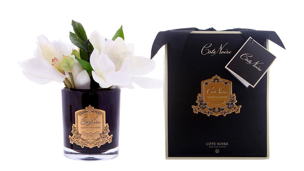 Côte Noire 白色木蘭 - 黑色玻璃杯