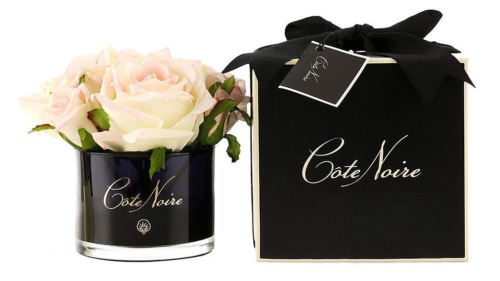 Côte Noire 嬌羞粉玫瑰 - 黑色玻璃杯