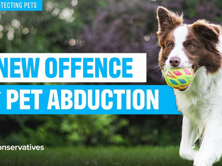A New Offence of Pet Abduction