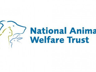 An appeal from Watford's MP on behalf of National Animal Welfare Trust