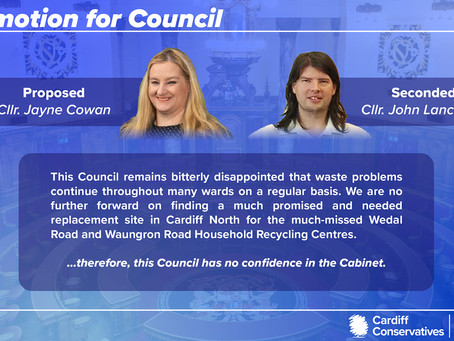 No Confidence in the Cabinet over issues in waste management department