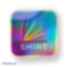 Shine Foil Sticker.png