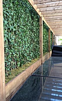 Ivy wall installation_edited_edited_edited