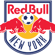 NY Red Bulls Soccer Team