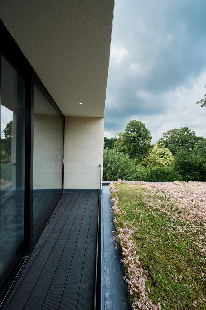 Wenbans bedroom green roof