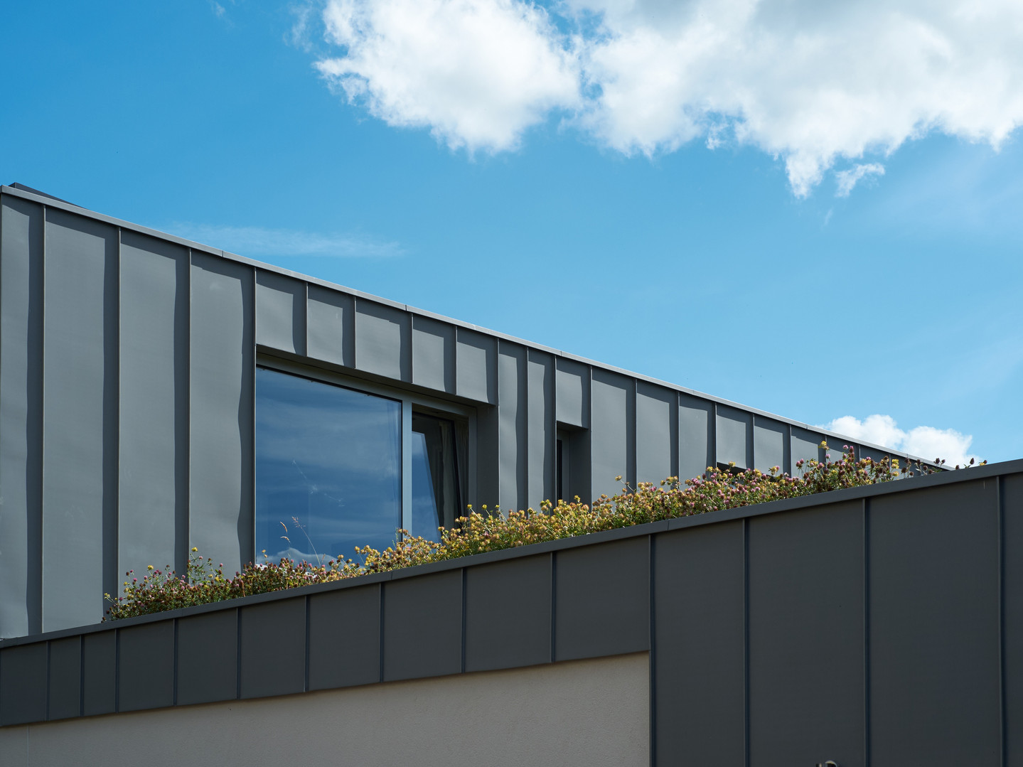 Leckhampton zinc and sedum roof