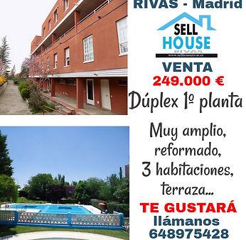 cultura 249 sellhouserivas.es.jpg