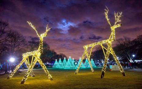 Christmas Display at the Brookfield Zoo