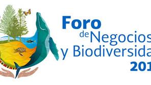 Encrucijadas en la defensa de la biodiversidad