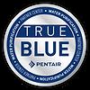 True Blue_RGB_digital.png