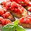 Thumbnail: 900 grams - Bruschetta with 1 Baguette