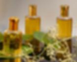 cinnamon_oil_export.png