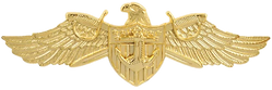 SSO Pin.png