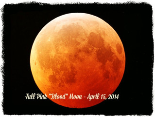Full Pink Blood Moon