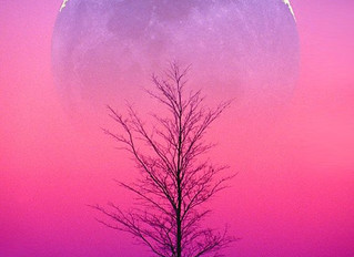 Winter Solstice, Yule & Full Cold Moon