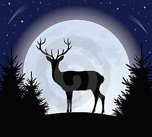 full-buck-moon