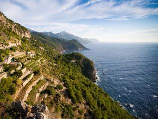 Soulshine Mallorca