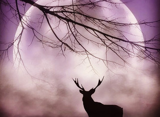 Full Blood Buck Moon & Total Eclipse