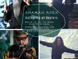 Shaman Apex