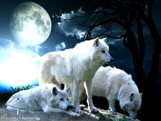 Happy Full Wolf Moon
