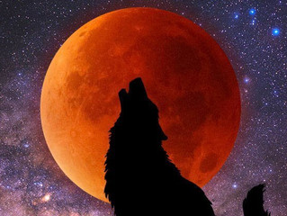 Happy Full Super Blood Wolf Moon