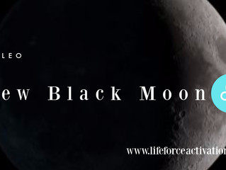 Black New Moon