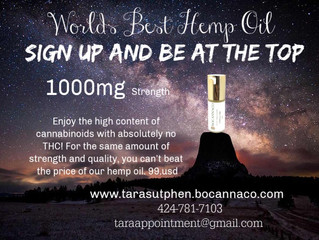 World Best Hemp Oil